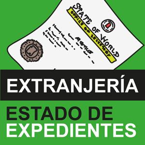 Consulta de Expedientes de Extranjera